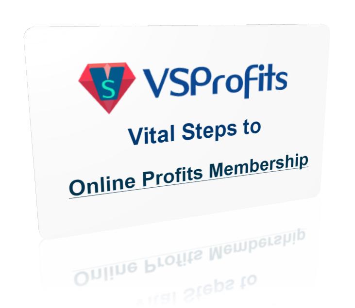 VSProfitsCard1